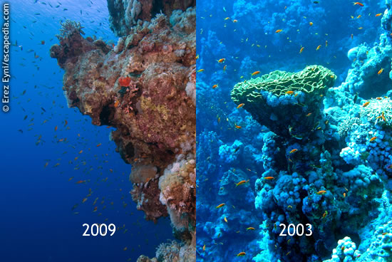 The wall of the Blue Hole at 2003 and 2009: the damage is evident